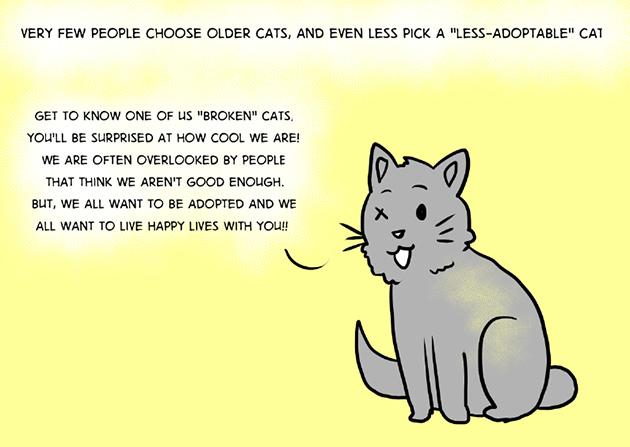adopt-5